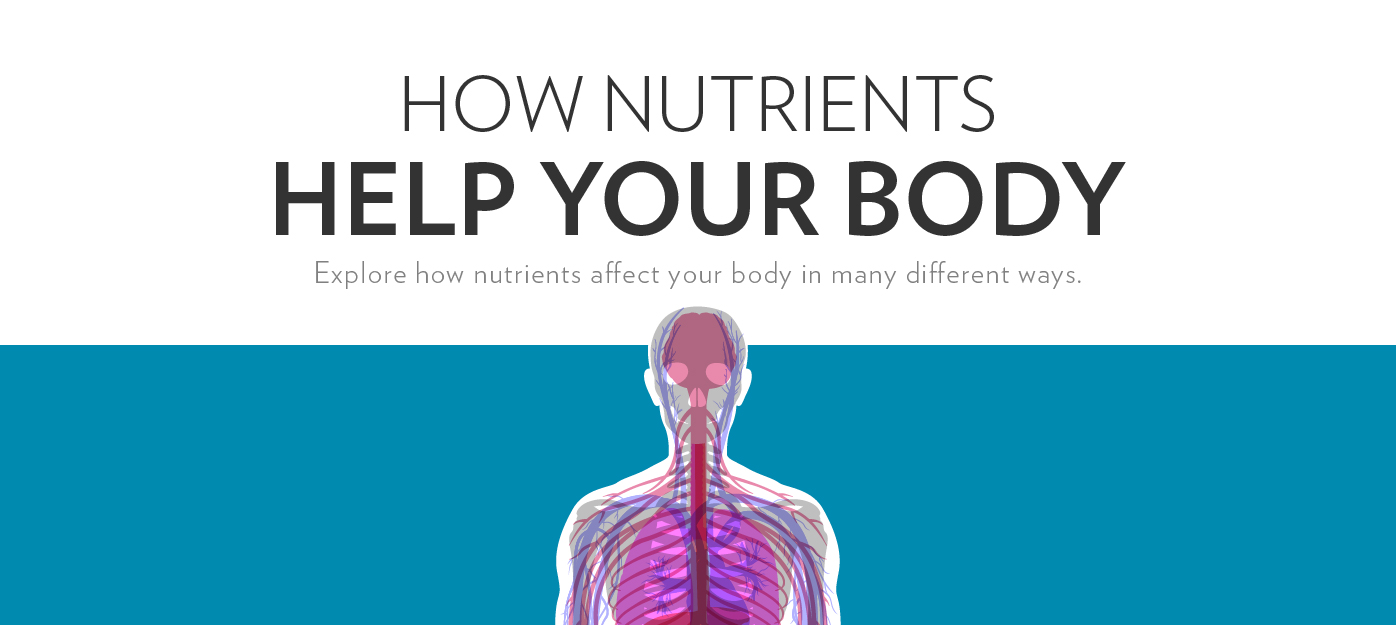 In this informative, interactive guide, you can browse through essential nutrients, view corresponding educational facts, and learn which foods can provide a good source of each
