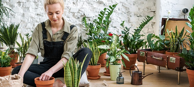 woman in overalls potting plants - by cottonbro on pexels